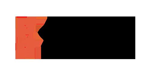 logo_sapient